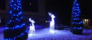 Изюм - Новогодняя сказка