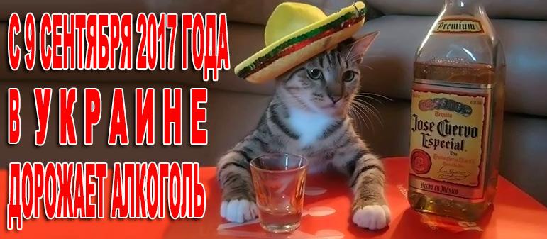 Cо следующей недели дорожает алкоголь