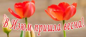 В Изюм пришла весна!