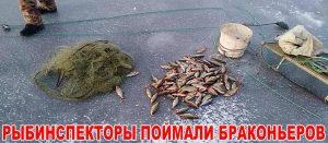 Рыбинспекторы поймали браконьеров