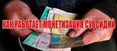 Как работает монетизация субсидий