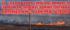За сжигание сухой растительности изюмчанам грозит штраф