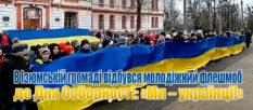 В Изюмской общине состоялся молодежный флешмоб ко Дню Соборности «Мы - украинцы!» [видео]