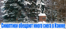 Синоптики обещают много снега в Изюме